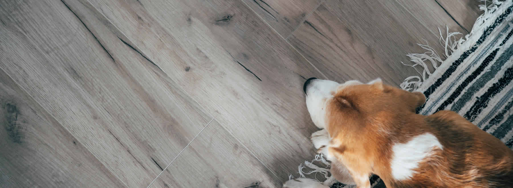 Laminate flooring from Ramsey Flooring.